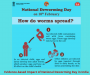 Evidence-based Impact of National Deworming Day in India
