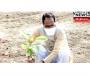 CM Shri Chouhan planted a Kadamba sapling